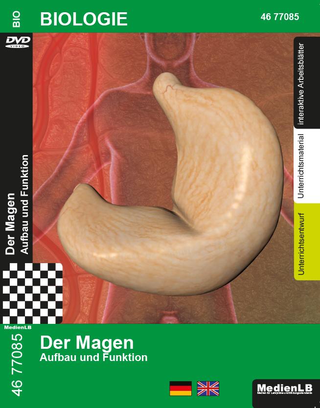 Der Magen - DVD - MedienLB
