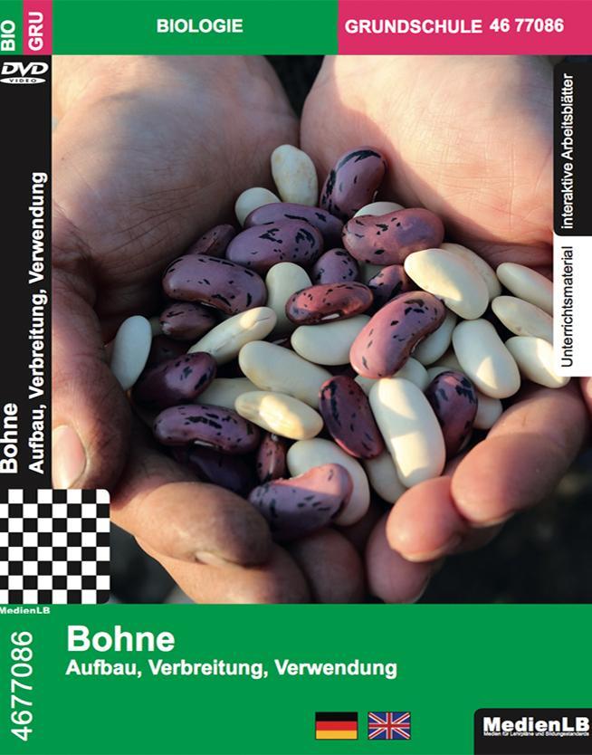 Bohne - DVD - MedienLB