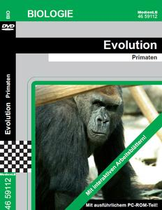 Evolution - Primaten