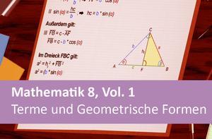 Mathematik 8, Vol. 1